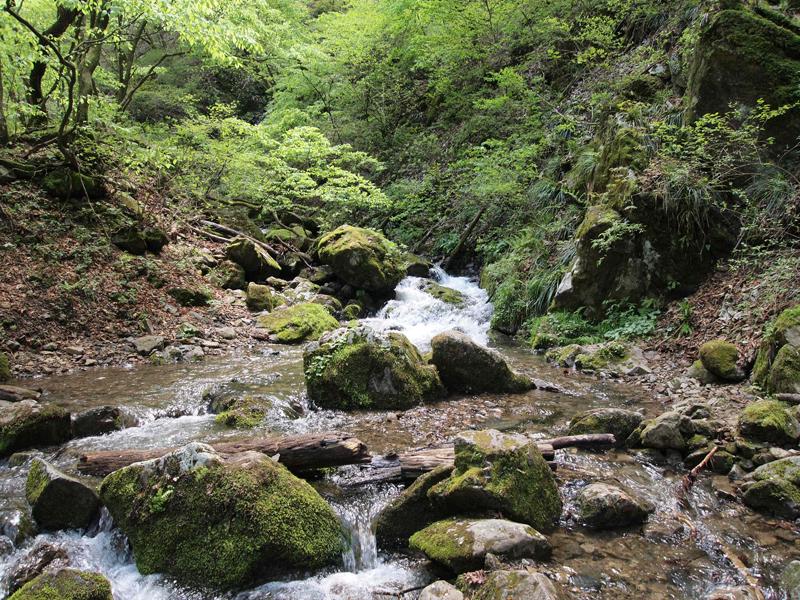 大塚山〜御岳山〜ロックガーデン