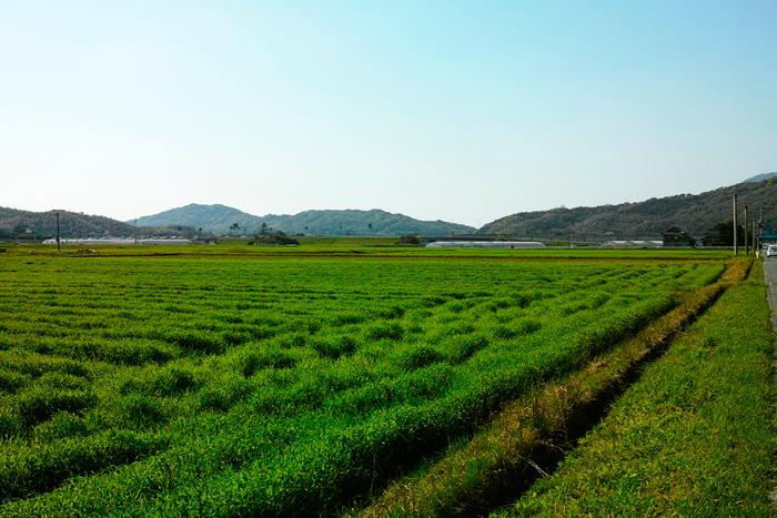 博多近くの自然豊かな里山 糸島